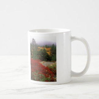 Acadia National Park Foliage Coffee Mug