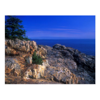 Acadia National Park Great Head View Postcard