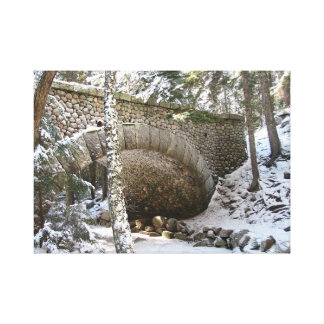 Acadia National Park Winter Canvas Print