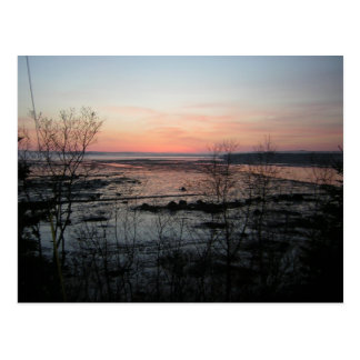 Acadia Postcard - 4
