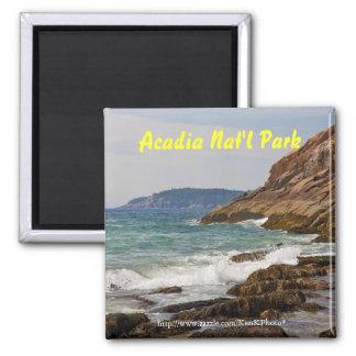 Acadia Shore Magnet