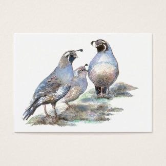 ACEO ATC California Quail Business Card