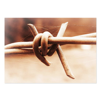 ACEO Sepia Barbed Wire Close Up Large Business Card