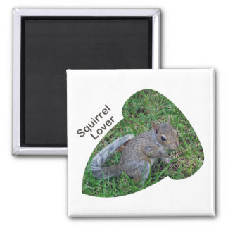 Acorn Baby Squirrel-Lover Magnet
