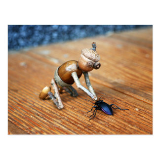 Acorn elf playing with a beetle postcard