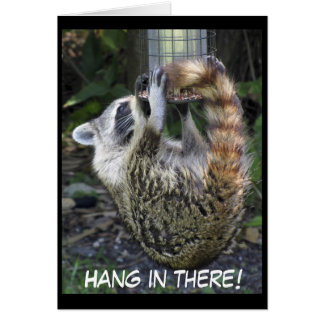 Acrobatic Raccoon, Greeting Card
