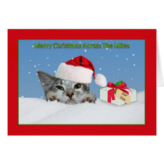 Across The Miles Christmas Card with Kitten