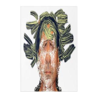 "Acrylic Wall Art, 24"" x 36"" Acrylic Print"