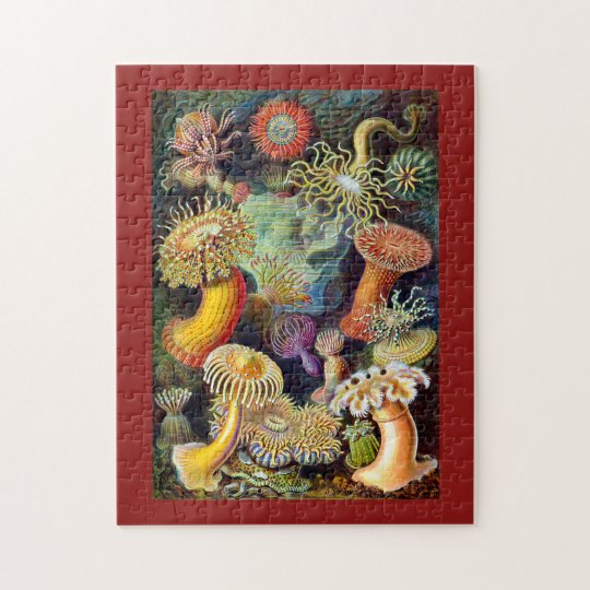 Actiniae by Ernst Haeckel Jigsaw Puzzle