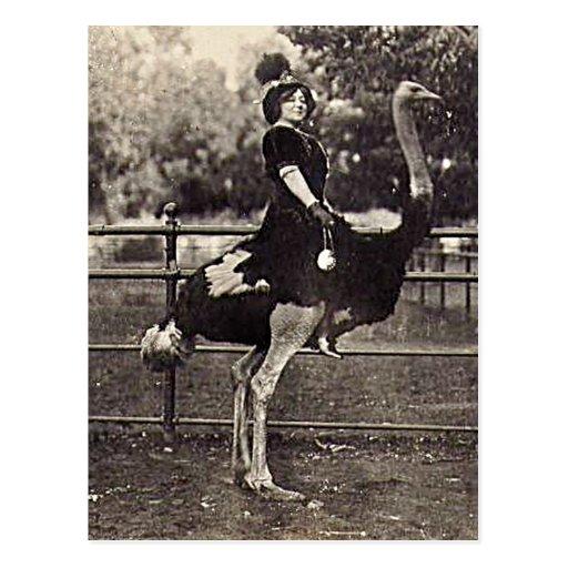Actrice vintage de Broadway montant une autruche