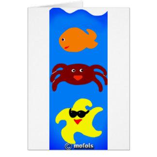 Acuario Cards