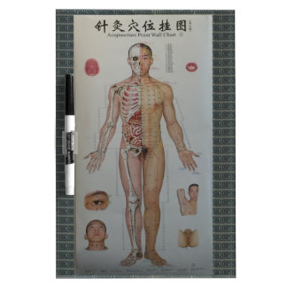 Acupuncture points full body front wall art dry erase whiteboards