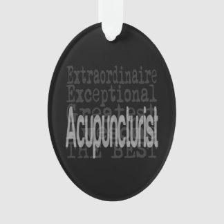 Acupuncturist Extraordinaire Ornament