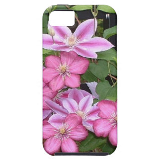 AD- Pink Clematis Flowers Photography Case For The iPhone 5