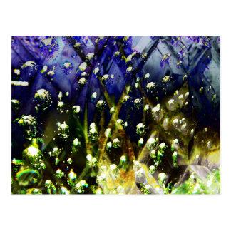 """Ada - 2/3 - """"The Aquarium"""" Postcard"""