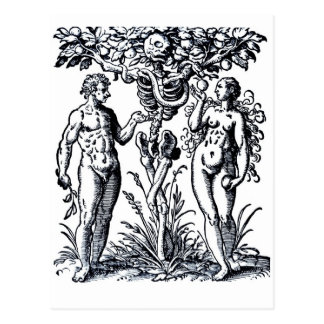Adam and Eve and the Tree of Knowledge Postcard