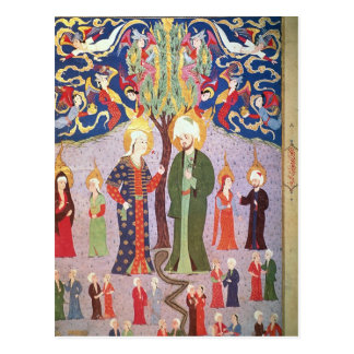 Adam and Eve and their Thirteen Twins Postcard