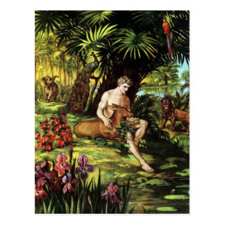 Adam in the Garden Postcard