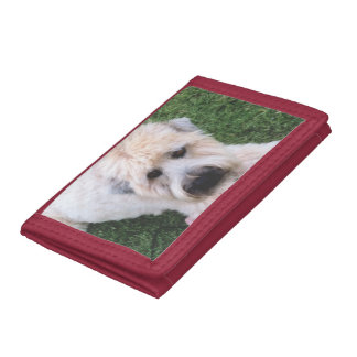 add a pet photo wallets