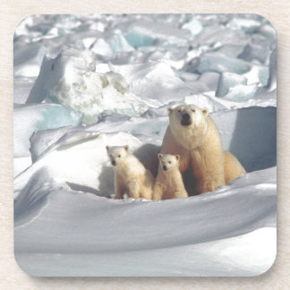 Add SLOGAN to Save Arctic Polar Bears Planet Ice Coaster