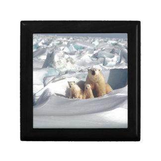 Add SLOGAN to Save Arctic Polar Bears Planet Ice Gift Box