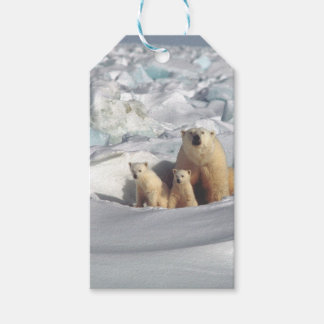 Add SLOGAN to Save Arctic Polar Bears Planet Ice Gift Tags