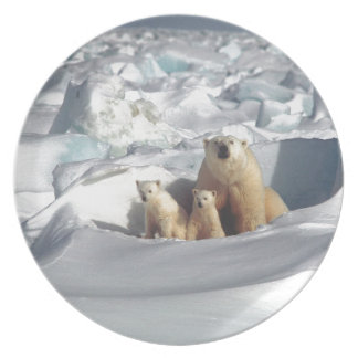 Add SLOGAN to Save Arctic Polar Bears Planet Ice Plate