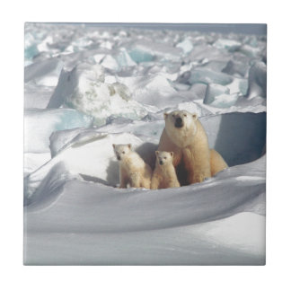 Add SLOGAN to Save Arctic Polar Bears Planet Ice Tile