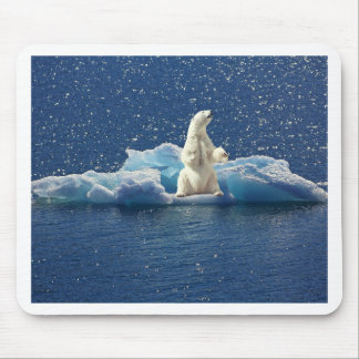 Add SLOGAN to Save Polar Bears Arctic Planet Ice Mouse Pad