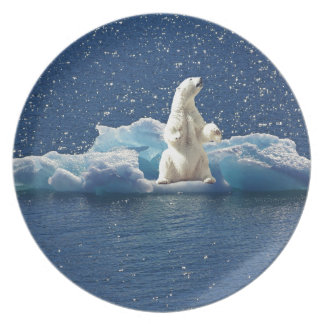 Add SLOGAN to Save Polar Bears Arctic Planet Ice Plate