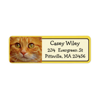 Add your Cat's Photo to this Address Label