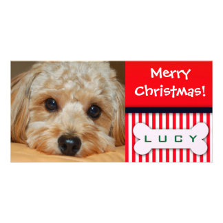Add your favorite dog photo to this Christmas temp Picture Card