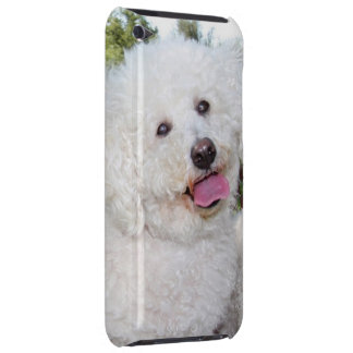 Add Your Own Photo To The Ipod Touch Case