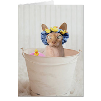 Add Your Own Text: Bath Time Greeting Card