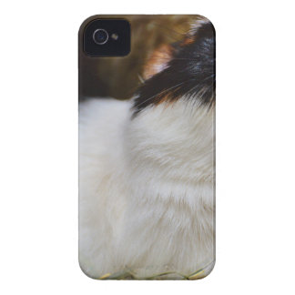 Add Your Own Text Funny Guinea Pig iPhone 4 Case-Mate Case