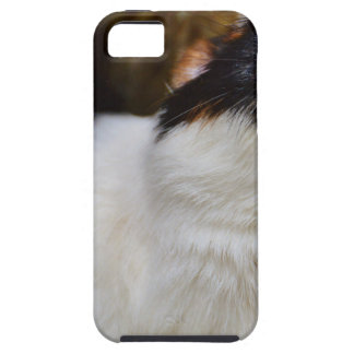 Add Your Own Text Funny Guinea Pig iPhone 5 Case