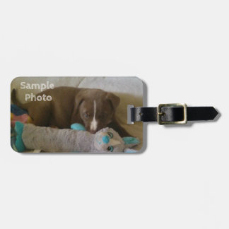 Add Your Photo & Info Luggage Tag