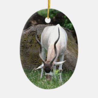 Addax Ornament
