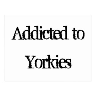 Addicted to Yorkies Postcard