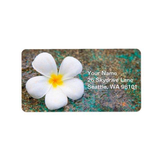 Address Label - Frangipani
