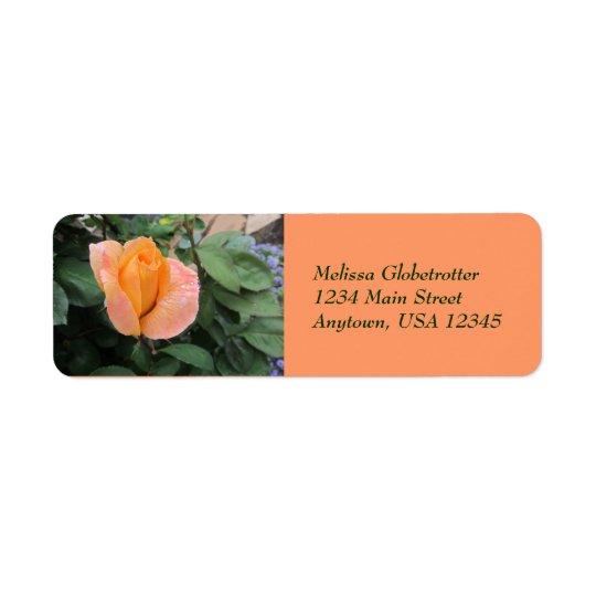 Address Label--Orange Rose With Rain Drops Return Address Label