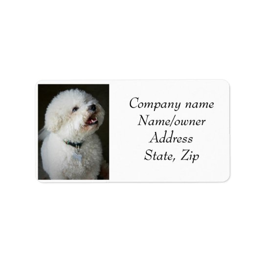 Address labels Bichon Frise