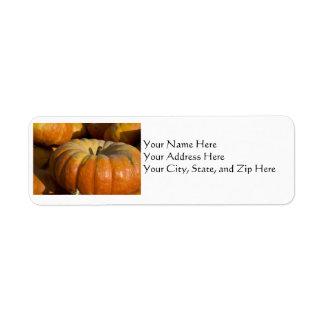 Address Labels:  Great Pumpkin Return Address Label
