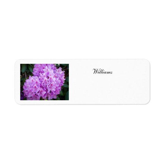 Address Lable Return Address Label
