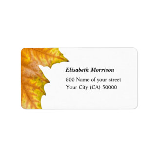 Address One yellow and gold maple leaf