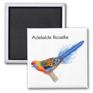 Adelaide Rosella Parrot Magnet