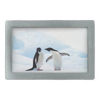 Adelie Penguins Belt Buckle