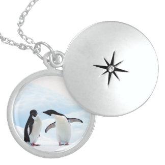 Adelie Penguins Locket Necklace
