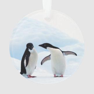 Adelie Penguins Ornament