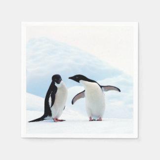 Adelie Penguins Paper Napkin